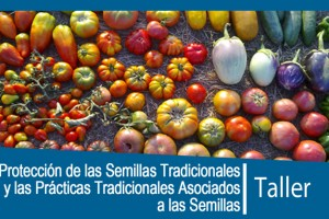 Conversatorio para Compartir Visiones sobre la Protección y Prácticas de las Semillas Tradicionales